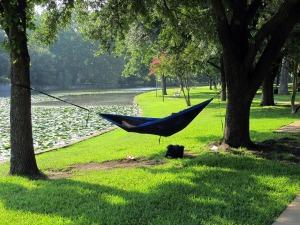 hammock-411122_1280