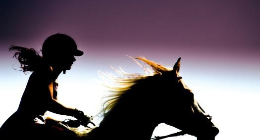 rider-197056_1280